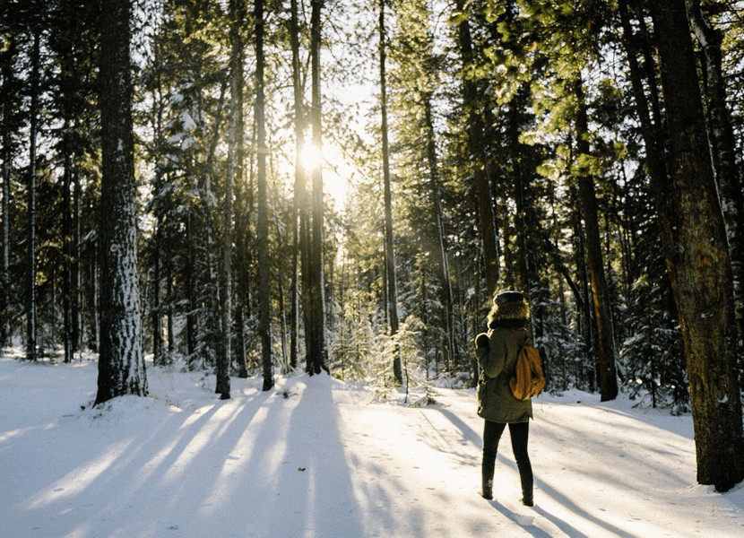 Woman standing in the snow in front of trees with the sun peaking through