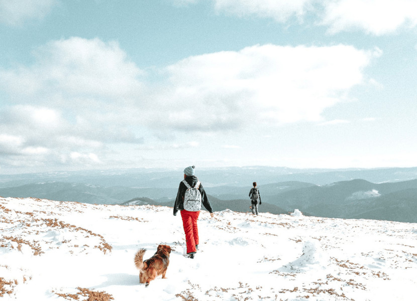 Woman wearing bright winter hiking pants in the snow with her dog