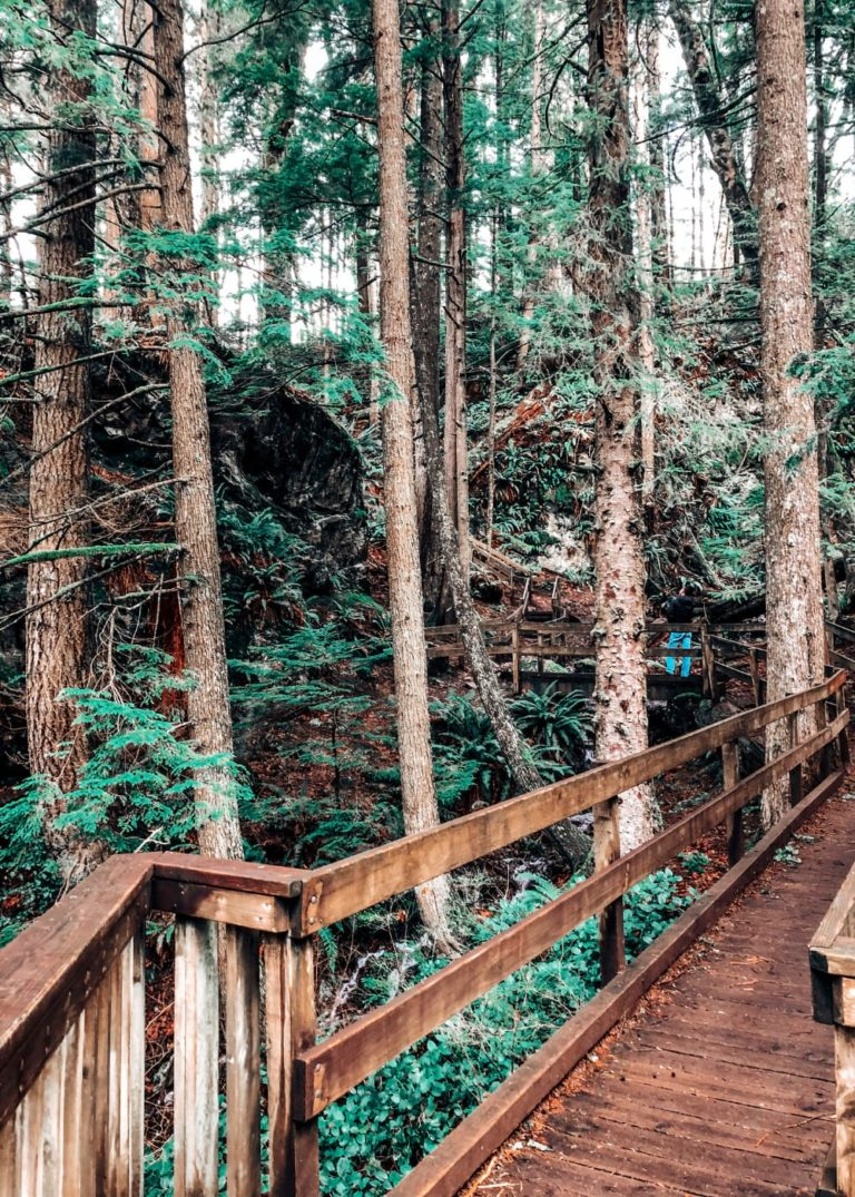 The Ultimate Guide to Twin Falls Trail, WA (Pro-Tips, How to Get There, and More!)