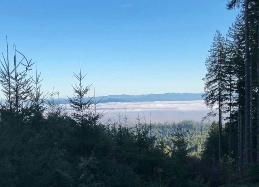 A stunning view above the clouds if you continue along Mima Falls West trail